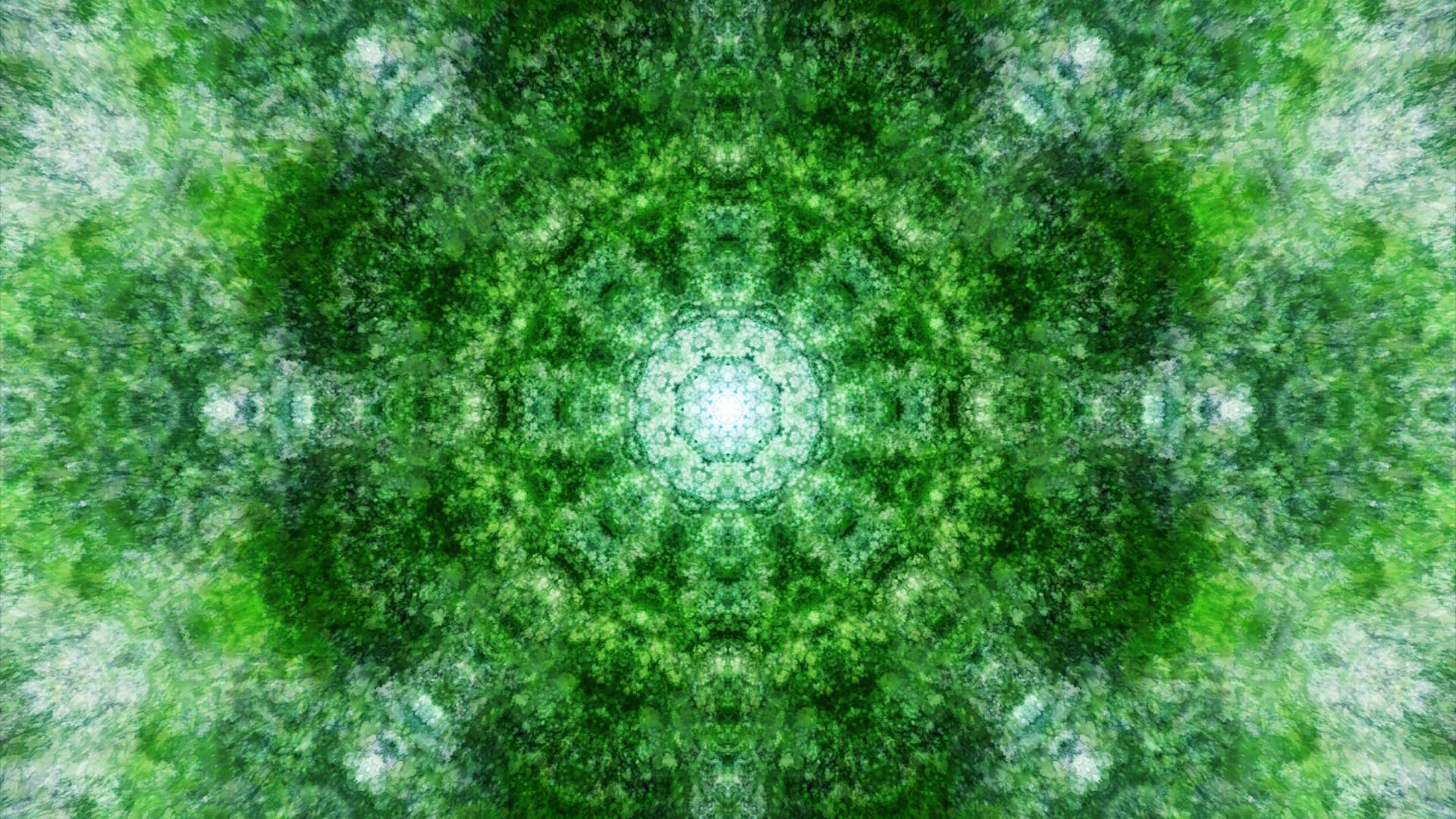 Emitting Velocity - Mohican Forest by Matt Swift Still 13
