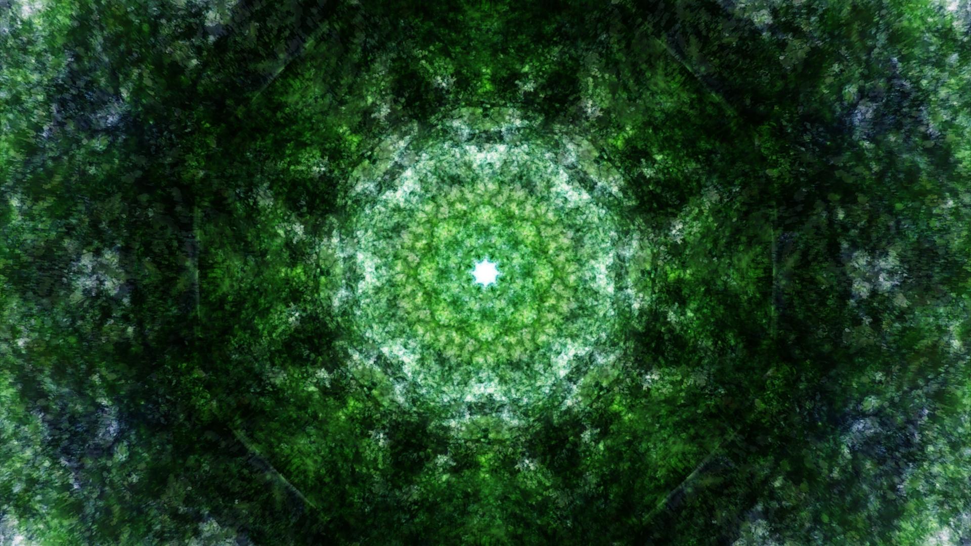 Emitting Velocity - Mohican Forest by Matt Swift Still 15