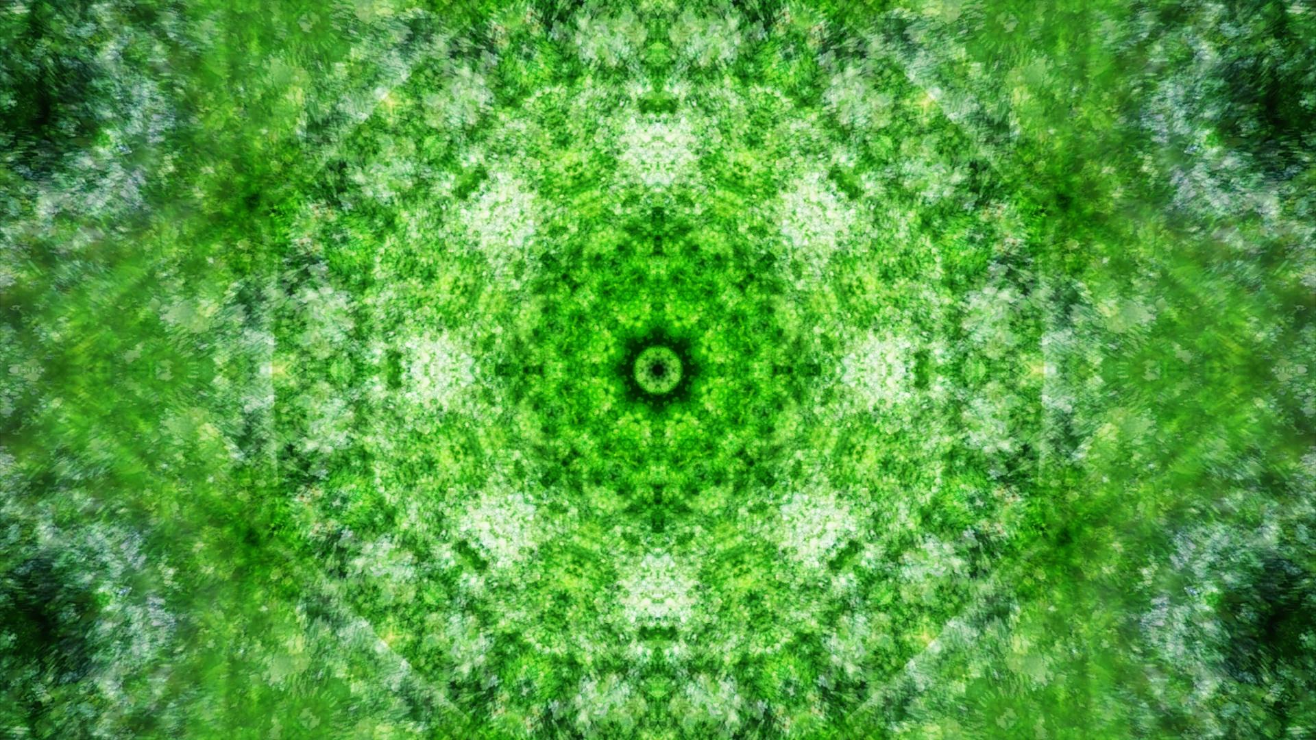 Emitting Velocity - Mohican Forest by Matt Swift Still 16