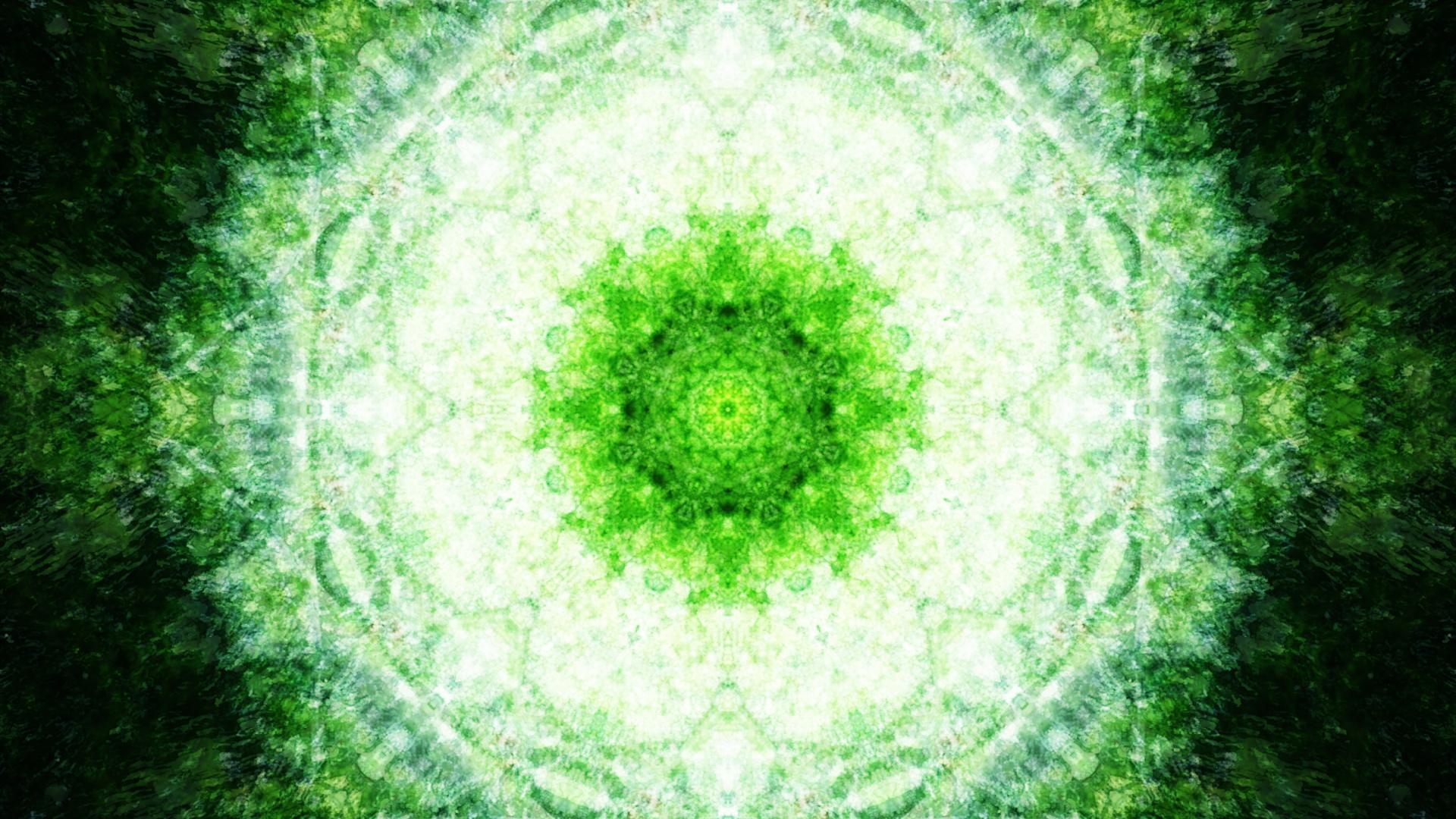 Emitting Velocity - Mohican Forest by Matt Swift Still 17