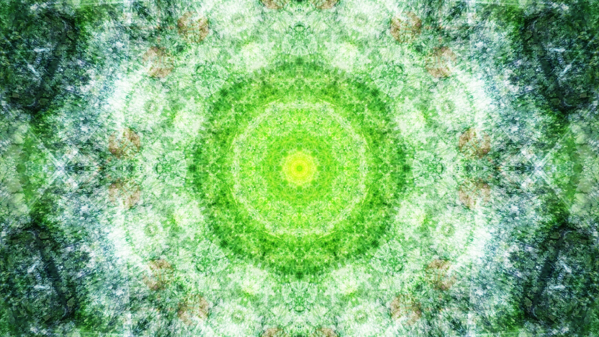 Emitting Velocity - Mohican Forest by Matt Swift Still 18