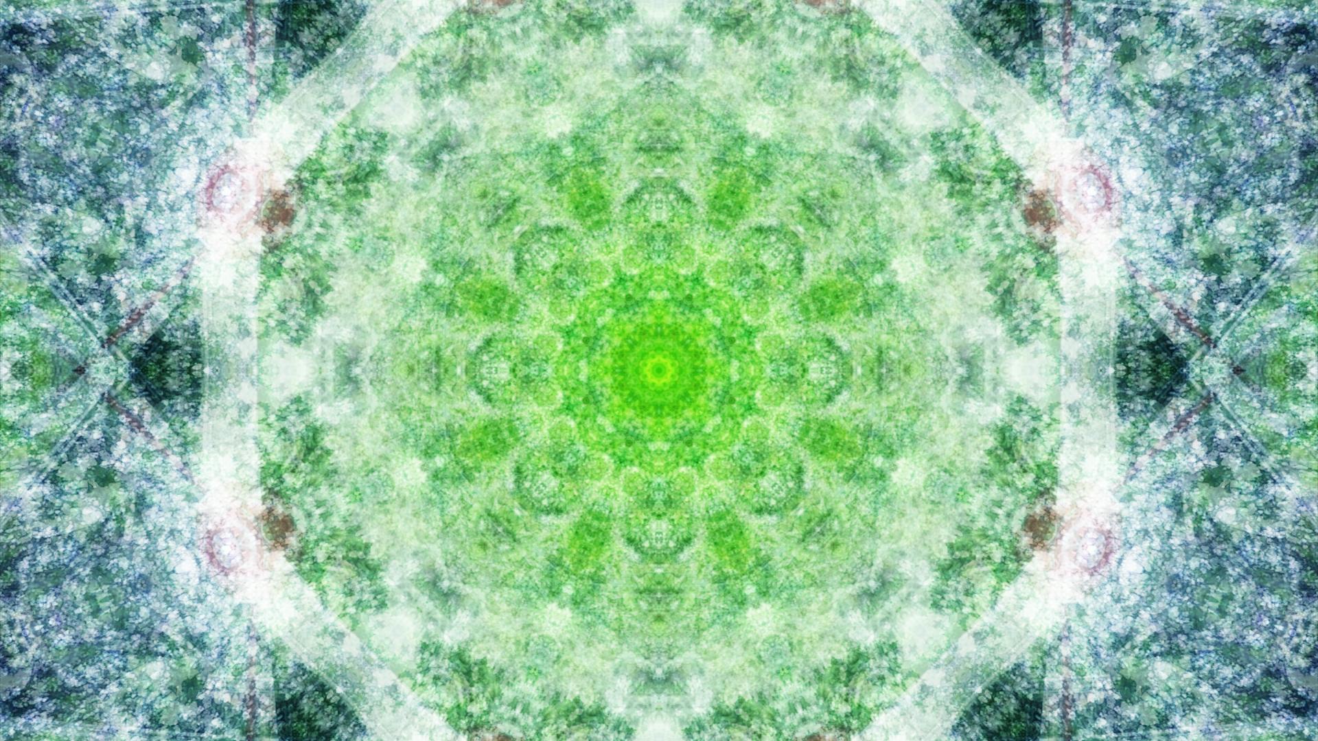 Emitting Velocity - Mohican Forest by Matt Swift Still 19