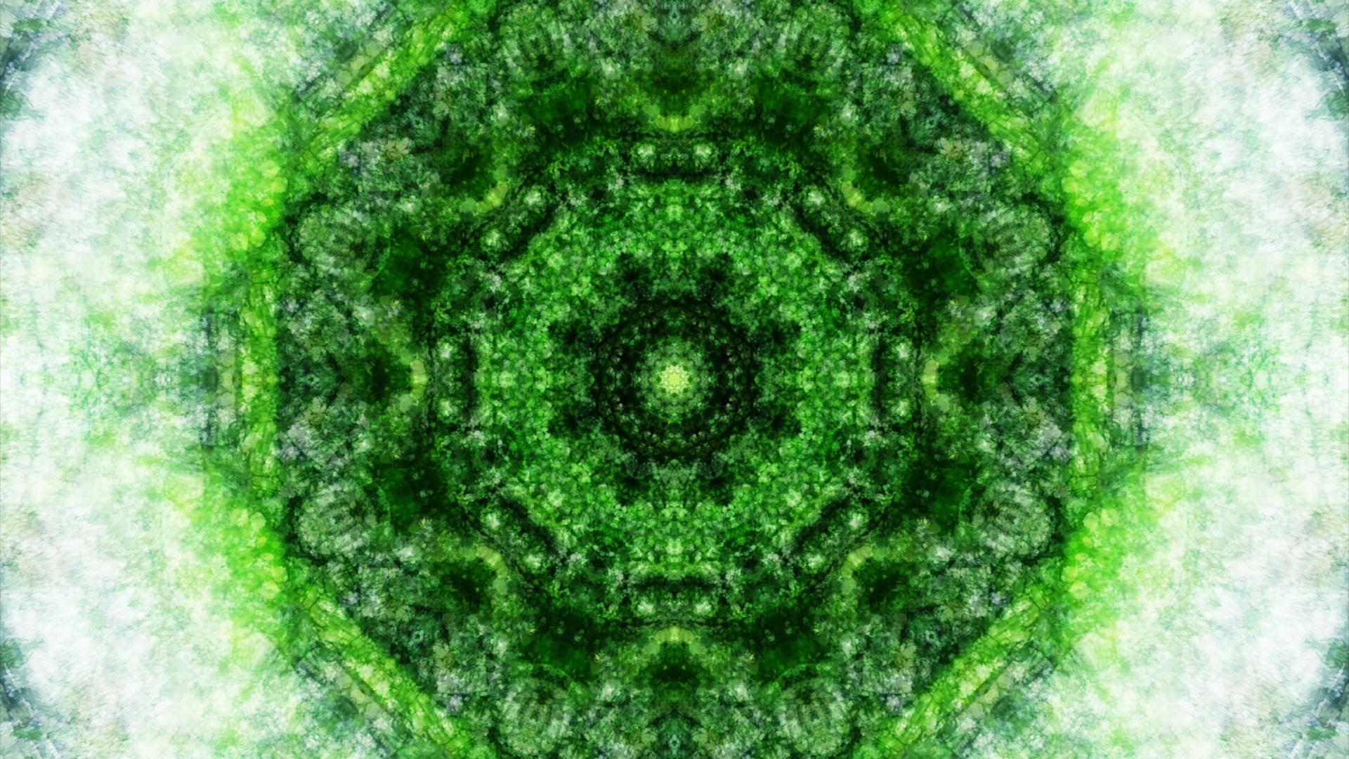 Emitting Velocity - Mohican Forest by Matt Swift Still 2