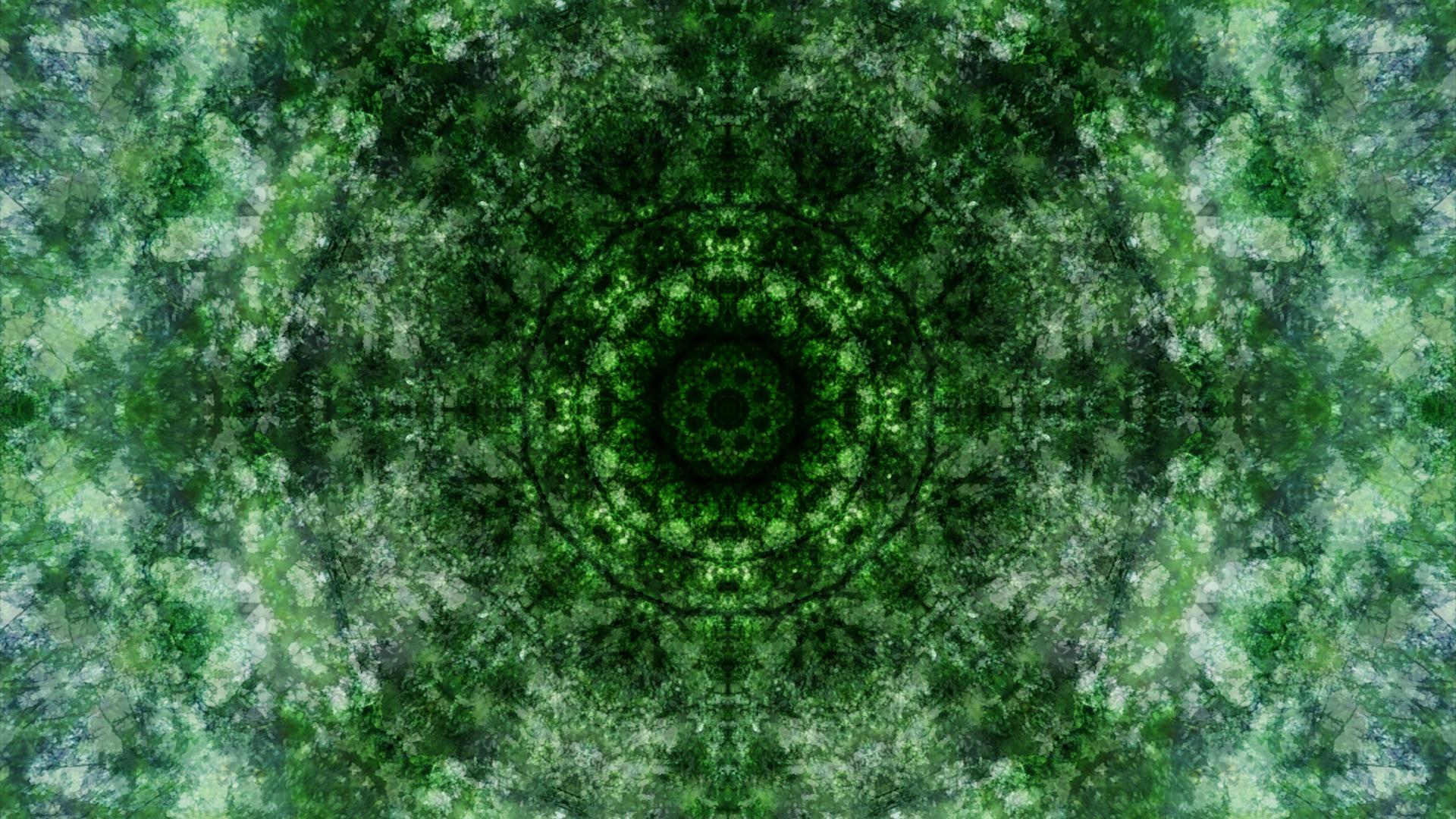 Emitting Velocity - Mohican Forest by Matt Swift Still 3