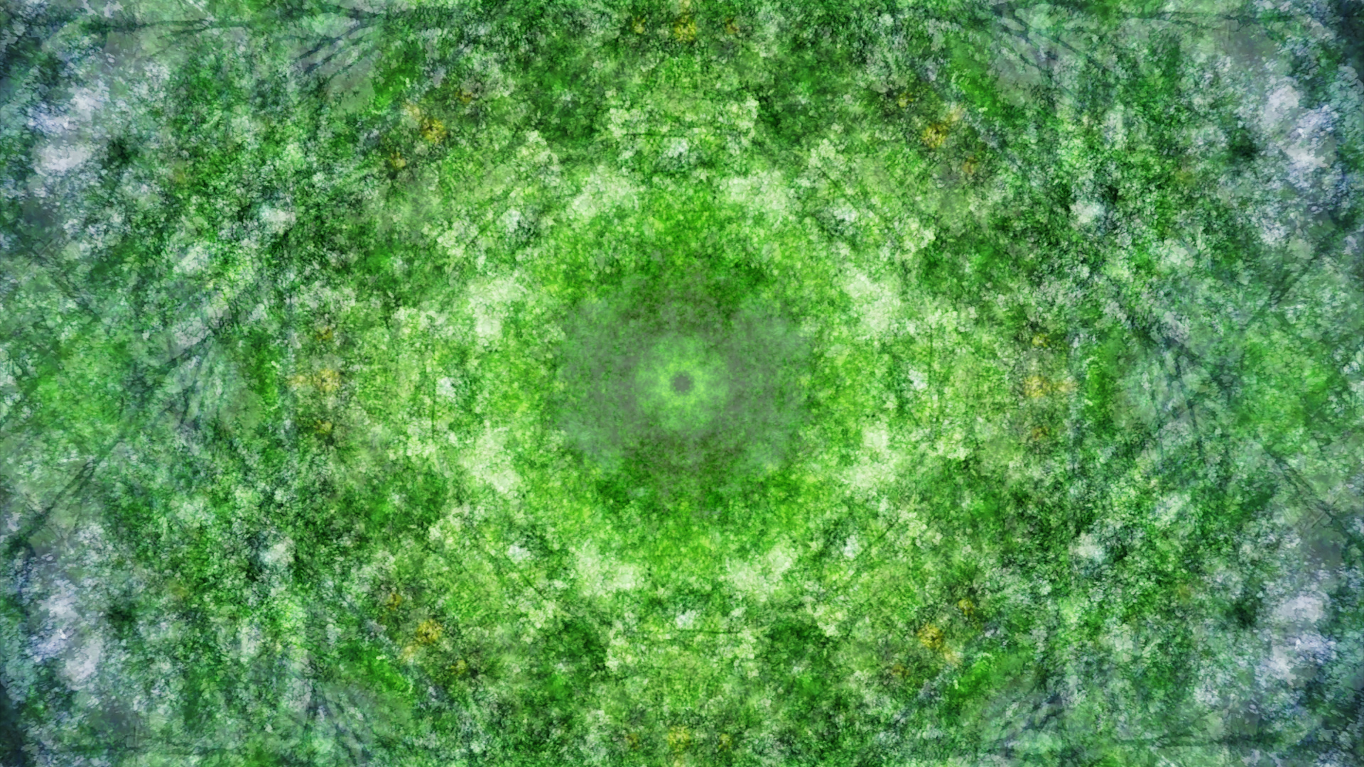 Emitting Velocity - Mohican Forest by Matt Swift Still 4