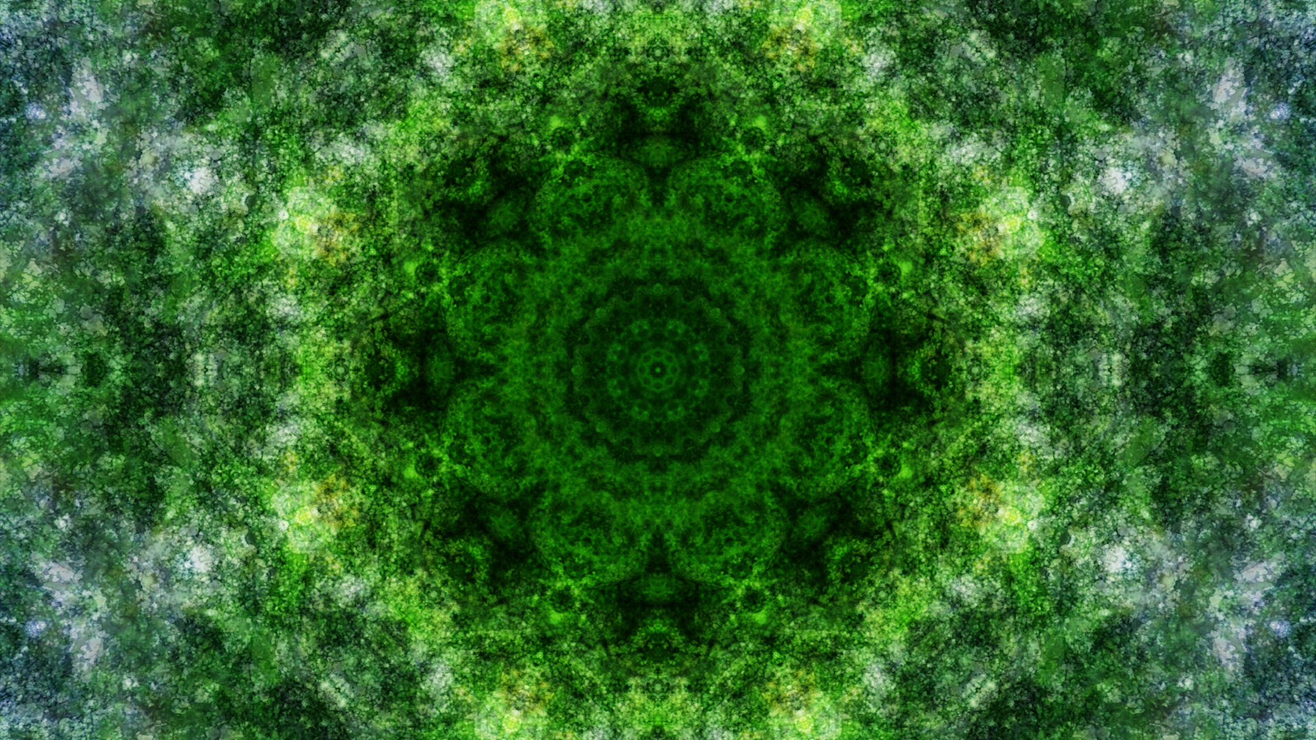 Emitting Velocity - Mohican Forest by Matt Swift Still 7