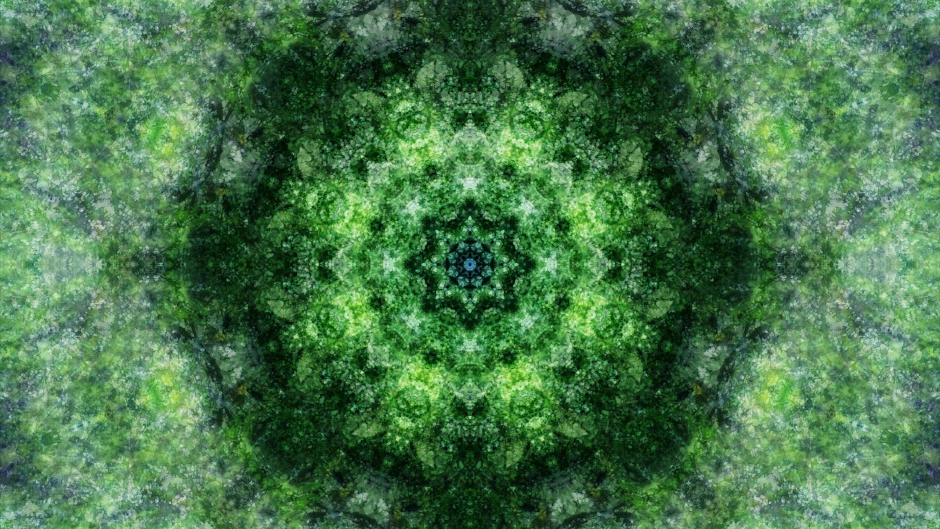 Emitting Velocity - Mohican Forest by Matt Swift Still 6