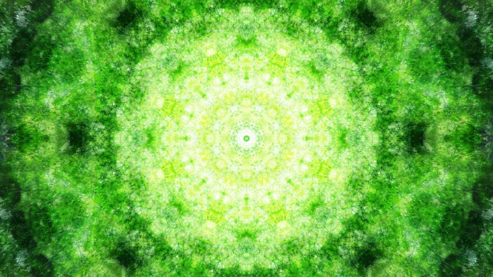 Emitting Velocity - Mohican Forest by Matt Swift Still 5
