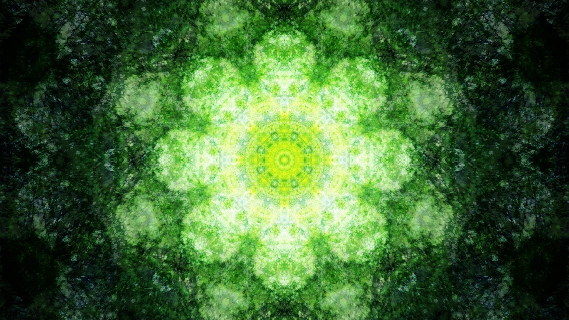 Emitting Velocity - Mohican Forest by Matt Swift Still 9