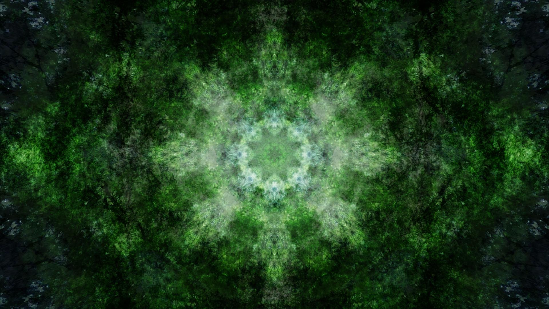 Emitting Velocity - Mohican Forest by Matt Swift Still 8